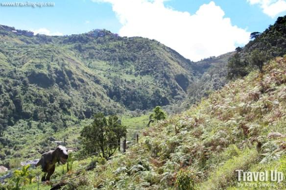 dinosaur island baguio mountain