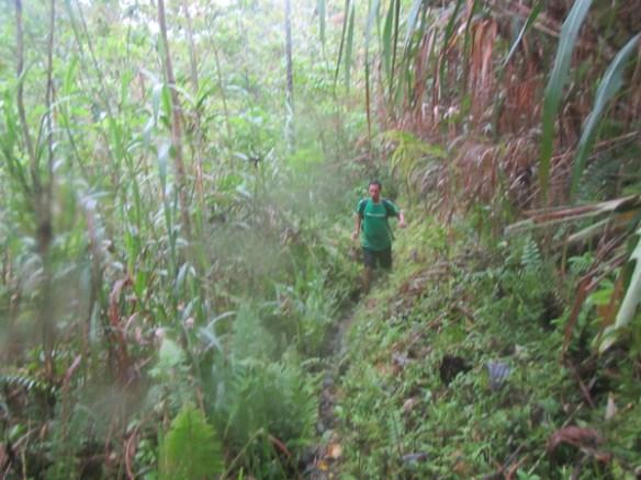 28. calbiga cave samar hike