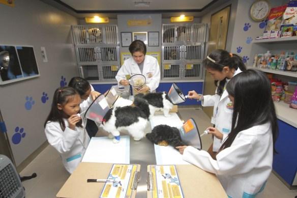 Kidzania Philippines Vet Clinic