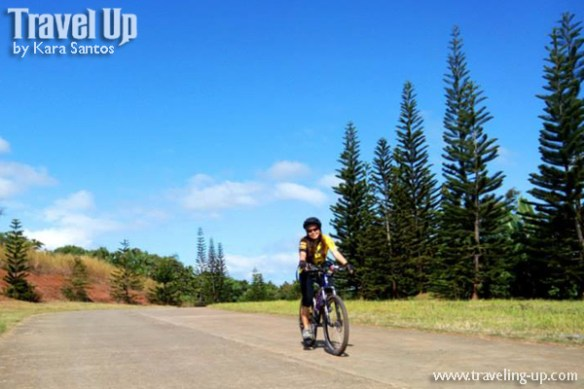 timberland roxas trail biking pine trees travelup