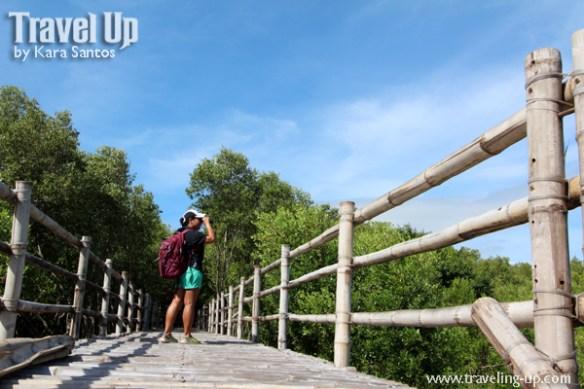 bataan balanga wetland nature park birdwatching