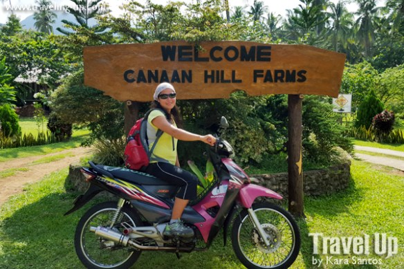 09-canaan-hill-farms-biliran-travelup