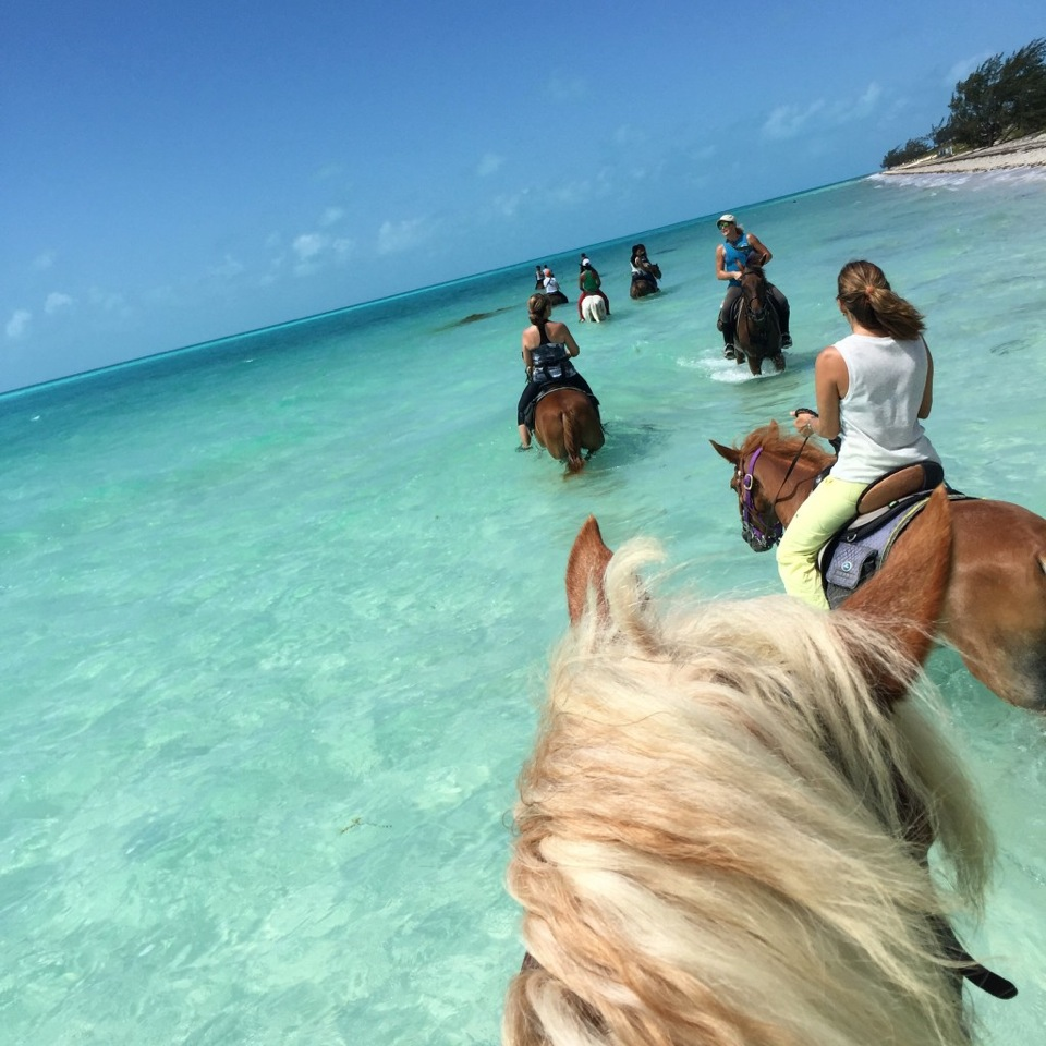 Affordable Friends Vacation Spots Sun Family Travel Around World Places To Take Your Kids Texas Vacation Spots Turks Caicos Is Most Beach Location To Relax Texas Near Beach bark post Vacation Spots In Texas