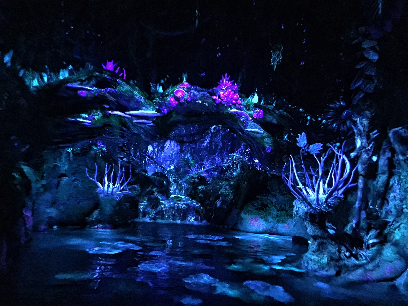 Animal Planet Wallpaper Disney S Pandora World Of Avatar What You Need To Know