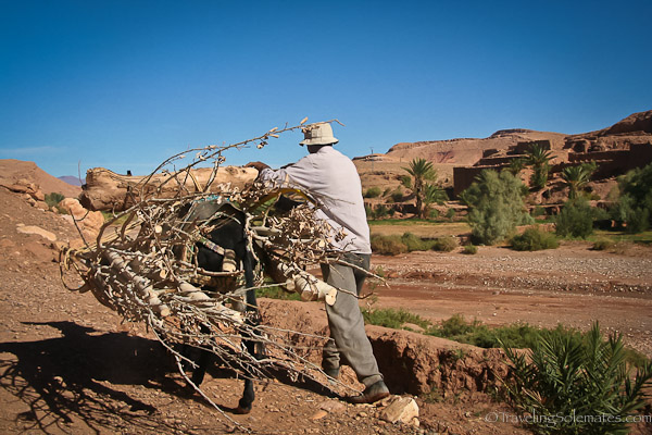 man carrying wood to Ait Benhaddou  ksar