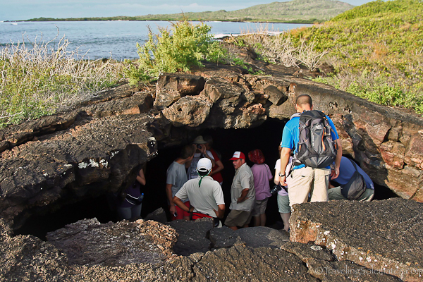 Lava tunnel in Isabela in Galapagos islands