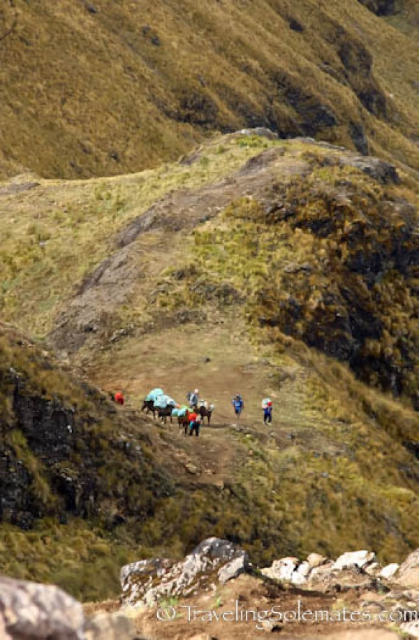 Trail from Hualcajasa Pass,  Lares Valley Trek Peru