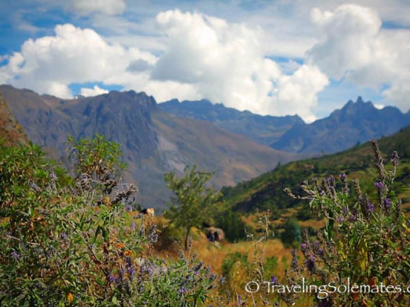 View from Pitacancha, Lares Valley Trek Peru