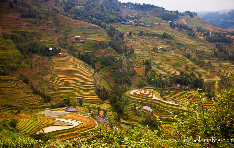 Agricultural Terraces -Trekking in the Hillribe Villages around Bac Ha, Vietnam