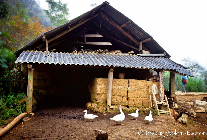 20_Trekking in the Hillribe Villages around Bac Ha, Vietnam