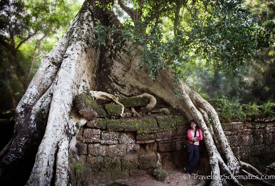 06_Ta Phrom Temple, Angkor, Cambodia