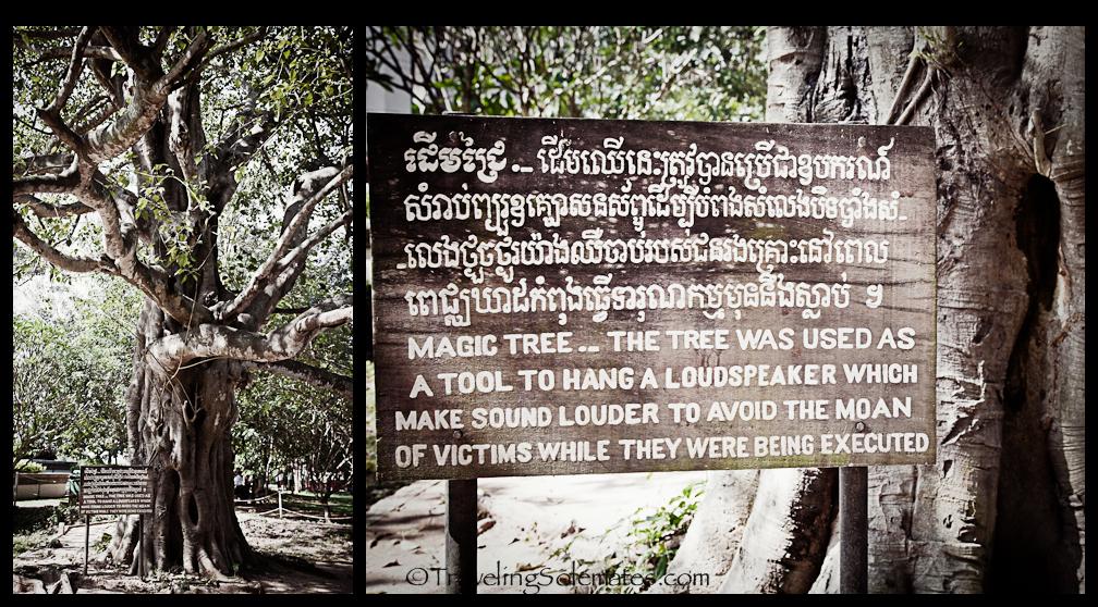 18_Magic Tree, Choeung Ek Killing Field, Phnom Penh, Cambodia