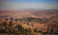 Jordan Valley view from King's Highway, Jordan