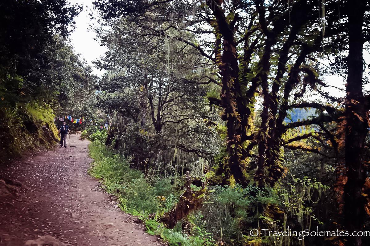 Hiking Trail to Tiger's Nest Monastery, Paro, Bhutan