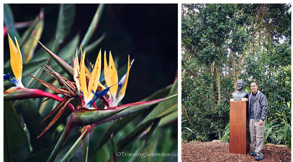 Kirstenbosch Botanical Garden, Cape Town, South Africa