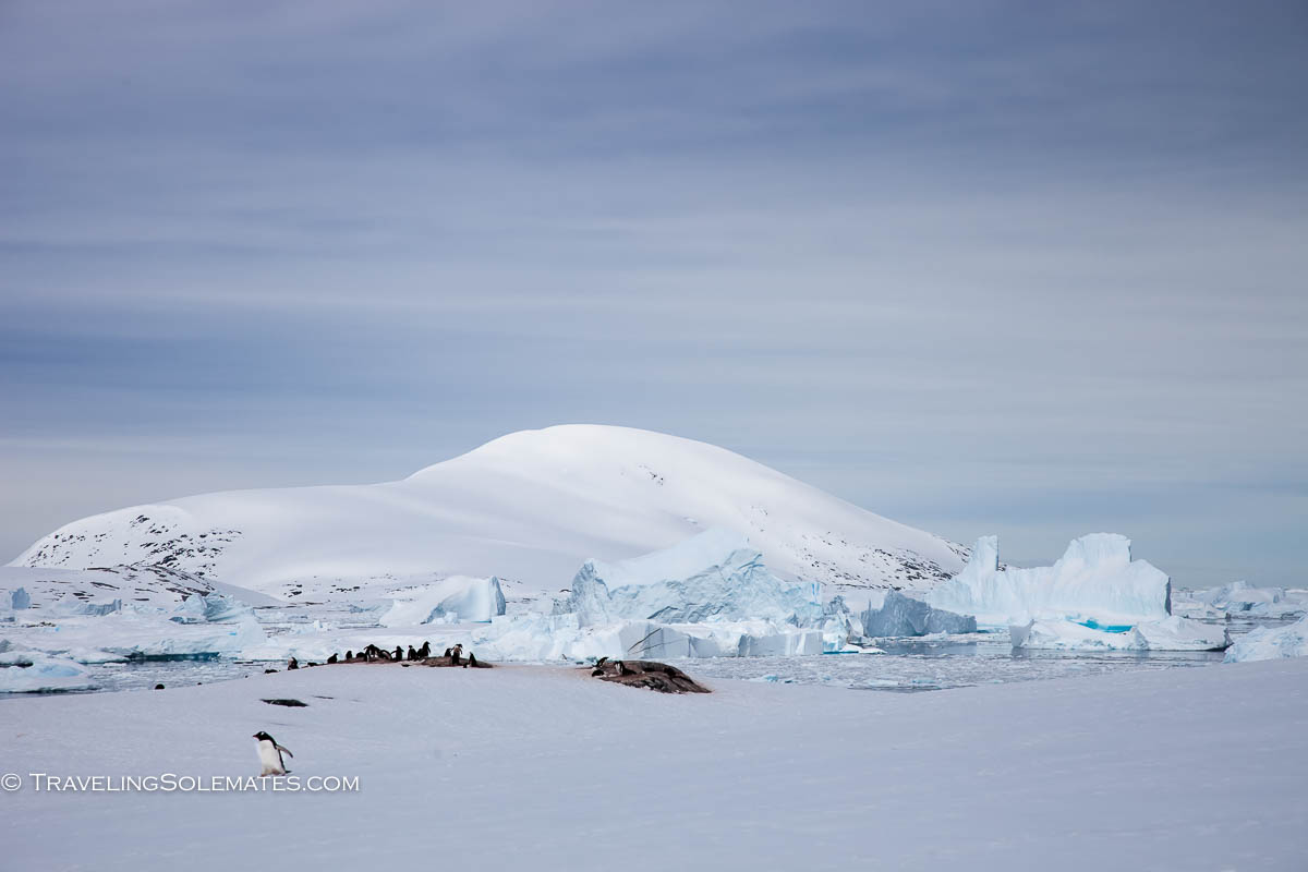 View from Booth Island, Antarctica