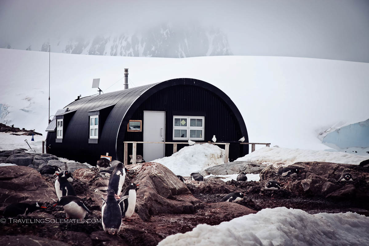 Hut for the volunteer staff of Branfield House Museum, Port Lockroy, Britishh Base A, Antarctica, Natioanal Geographic Expeditions, Lindblad Expeditions.jpg