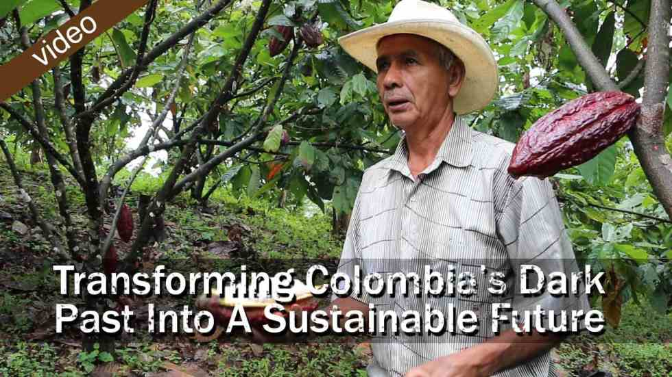 Transforming Colombia's Dark Past Into A Sustainable Future