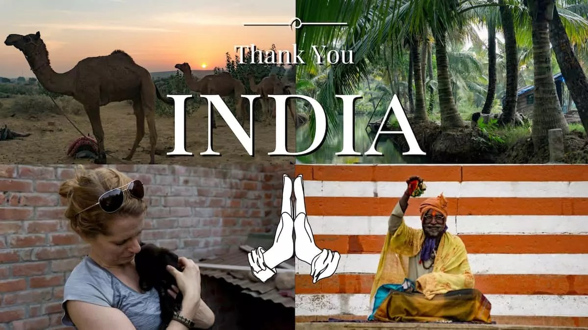 Thank you India for giving us all these
