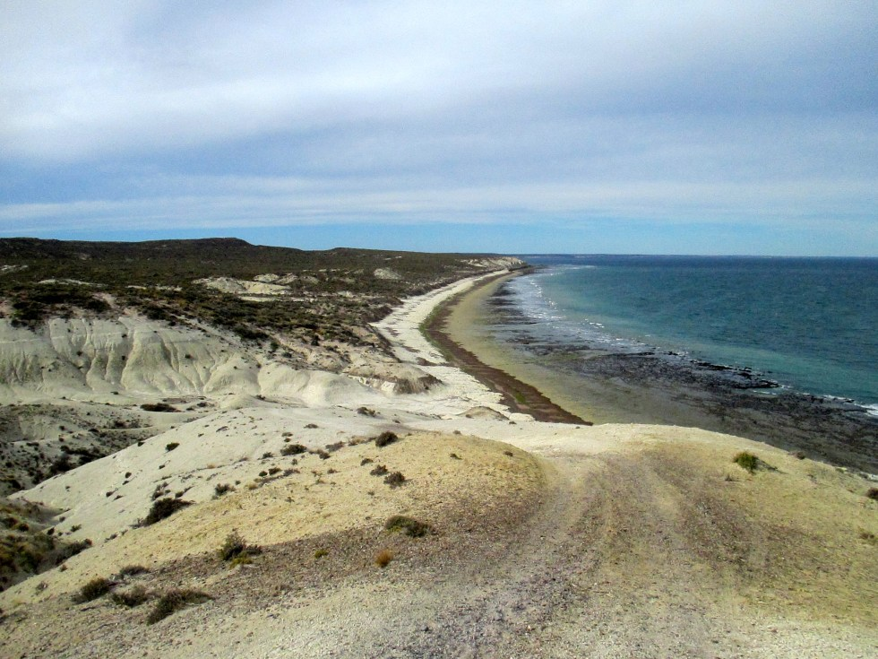 Puerto Madryn: Patagonia's Steppe Child
