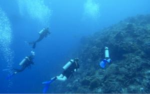 cozumel-diving