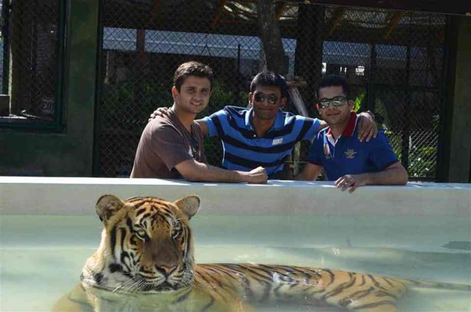 Tiger Kingdom - things to do in phuket