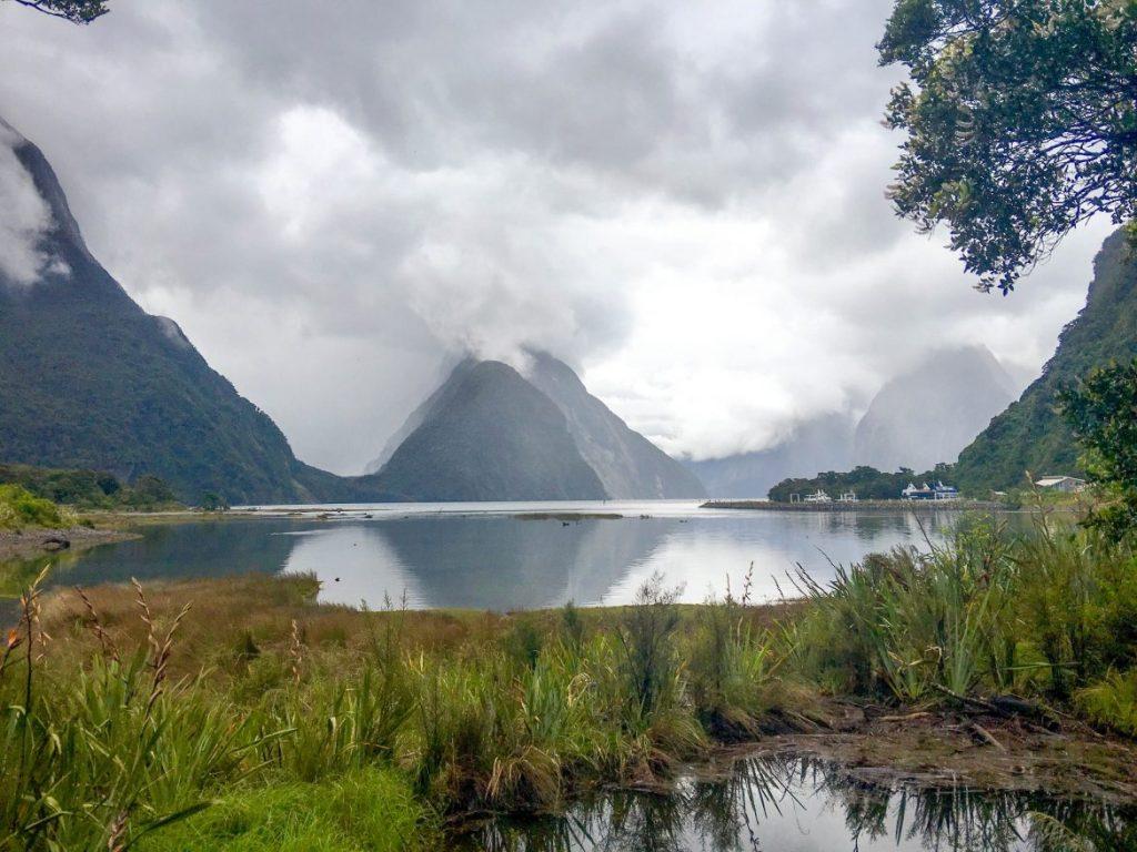 NZ-0885