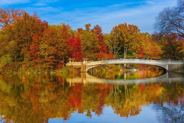 new -york-city-central-park-fall