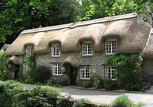 Quaint cottage, Devon