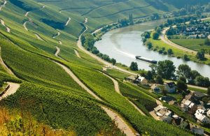 Mosel Wine Region