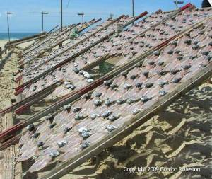 Fish Drying, Nazare