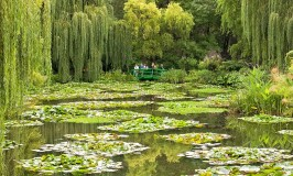 Monet's Lily Garden in Giverny