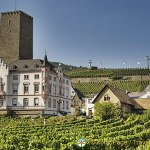 German Wine and Beer Festivals