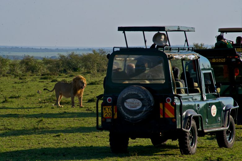 Kenya-Travelstart-Safari