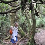 Hiking at Poas Volcano, Costa Rica with a toddler on my back - how much harder can it be to move a blog? We'll see...