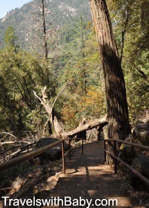 A staircase on the trail down to Crystal Cave in Sequoia National Park