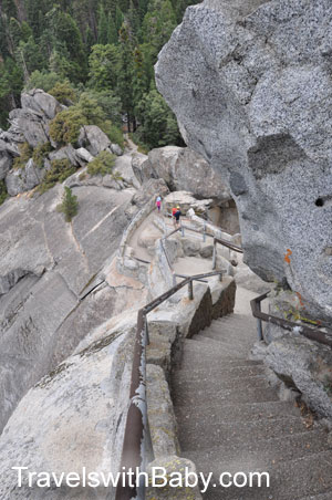 Looking down the steps at Moro Rock