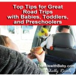 Planning a road trip with a baby, toddler, or preschooler? Fear not. The penguin is here to help.