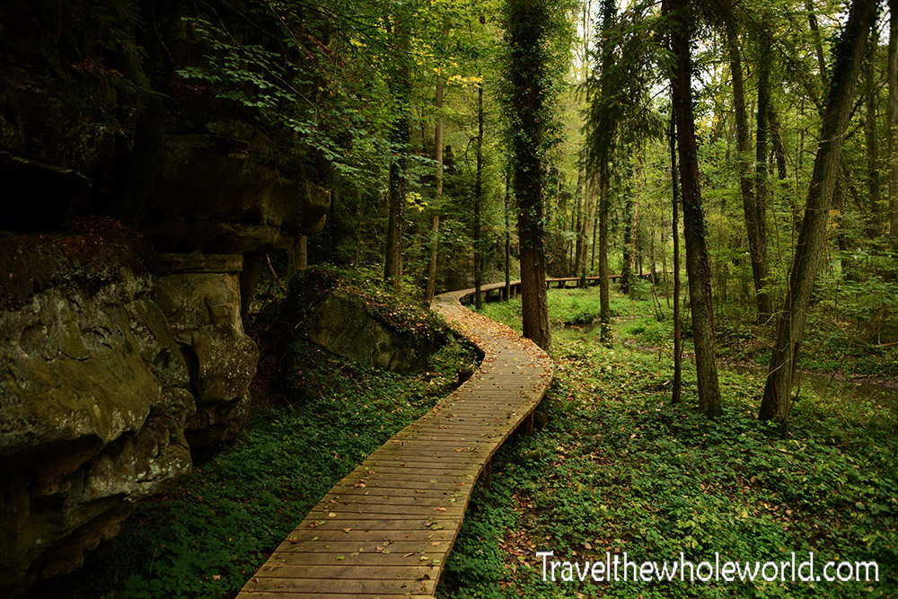 Fall Woods Wallpaper Hiking In Mullerthal