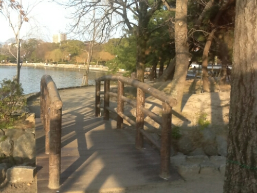 Bridge in Ohori Park