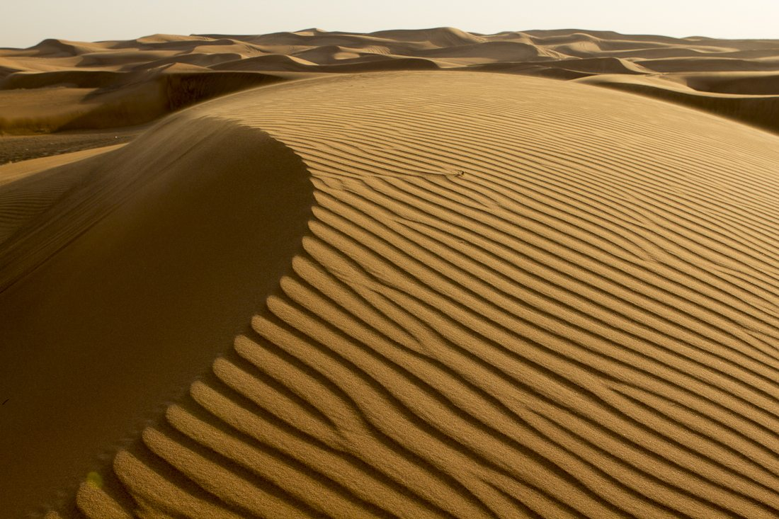 Dubai - The Sands of Future