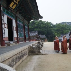 While this is a different temple, the picture is meant to show a temple stay experience. Here, the monks are doing their afternoon prayers in Haeinsa Temple.