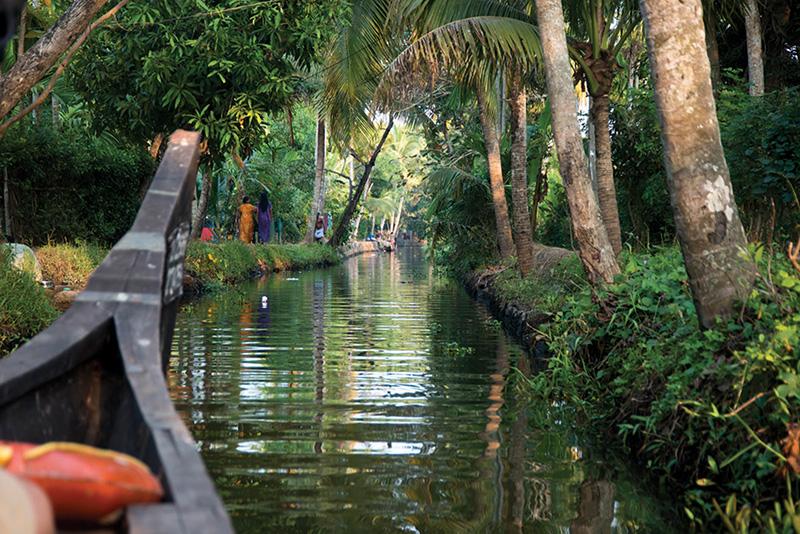 Relaxing in Kerala's Warm Embrace
