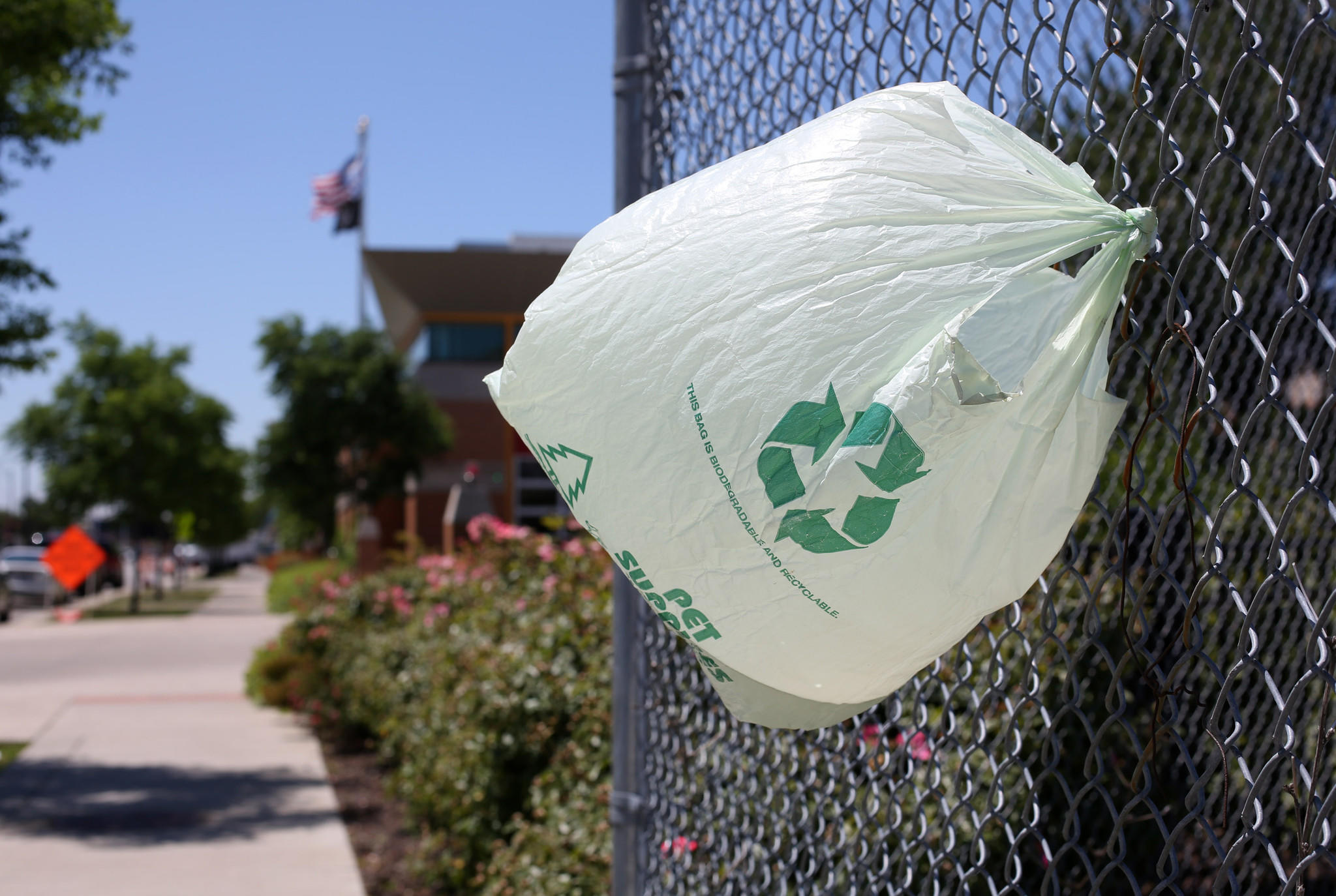 A plastic bag hangs flapping from fence on blue island avenue tuesday june 5