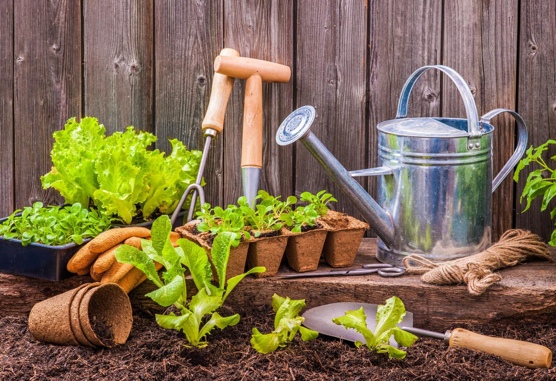 Garden Tips Did You Know Pomerado News