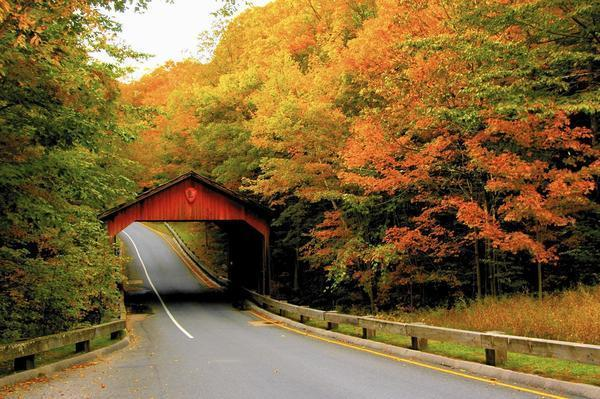 Gatlinburg In The Fall Wallpaper 4 Fantastic Midwest Road Trips For Fall Color Chicago