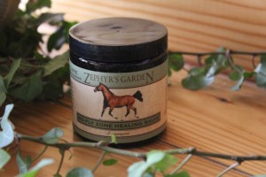 No-Fly Zone Healing Salve, 8 ounces, $29