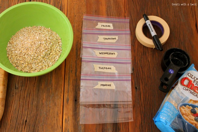 Homemade Oatmeal Packets (treatswithatwist.com)