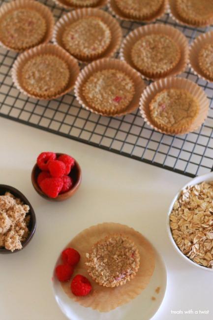 Raspberry Oatmeal Blender Muffins // gluten free // treatswithatwist.com