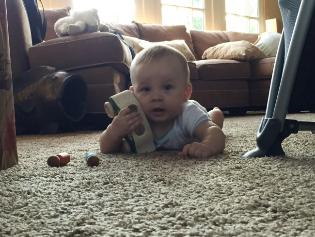 Life With Canaan: 6 Months In